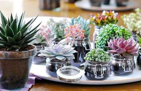 7. Potes de vidro podem se transformar em perfeitos vasos para suculentas – Foto: Paisagismo