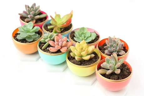 44. Vasos coloridos para dar mais alegria ao seu jardim – Foto: Casa abril