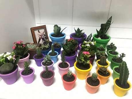 45. Vasos coloridos para suculentas transmitem mais personalidade ao seu ambientes – Foto: Via Pinterest