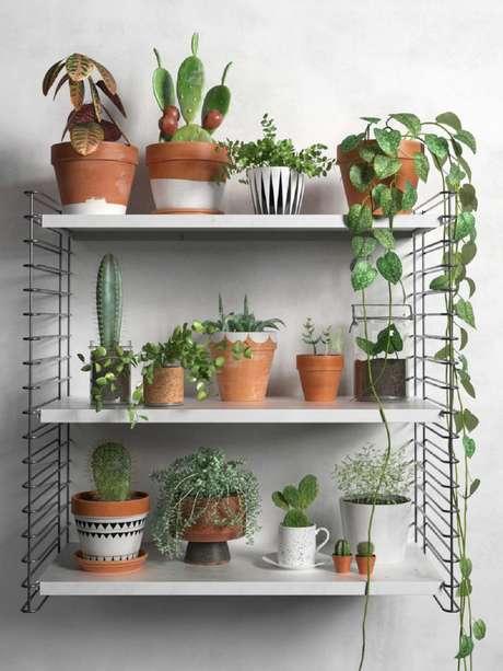 47. Utilizar prateleiras para seu jardim interna de suculentas é uma ótima opção para otimização de espaço – Foto: Via Pinterest