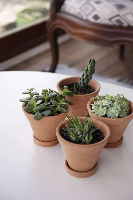 54. Vasos para suculentas de barro são ótimas opções para decorações clássicas – Foto: Revista Viva Decora