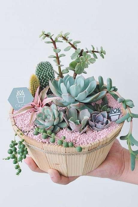 55. Diversas espécies de suculentas em um mesmo vaso – Foto: Via Pinterest