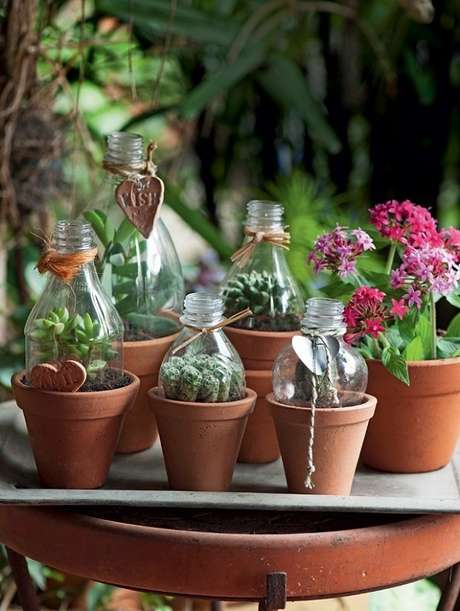 56. Vasos de barro sempre são uma boa escolha no cultivo de suculentas – Foto: Revista Viva Decoração