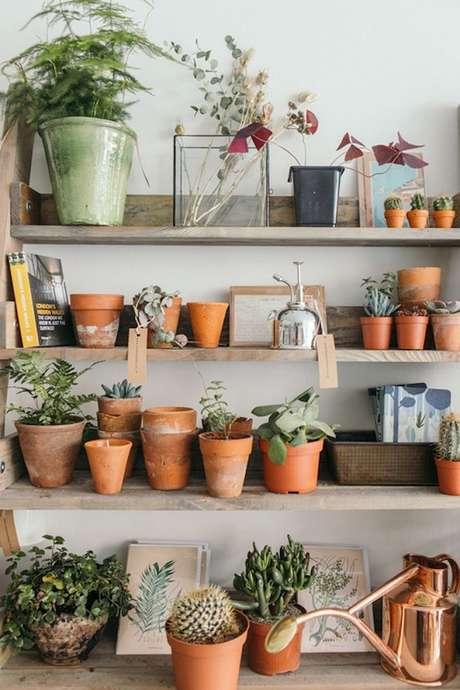 57. Vasos de suculentas em prateleiras são ótimas para um jardim interno – Foto: Via pinterest