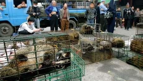 Autoridades governamentais apreendem animais em mercado em Xinyuan para prevenir a dispersão do Sars em 2004