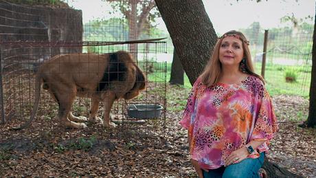 Carole Baskin coordena a reserva Big Cat Rescue, em Tampa, na Florida
