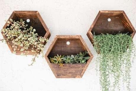 51. Floreiras fetos de nicho colmeia são boas opções – Foto: Via Pinterest