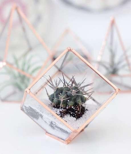 84. Cultive seu terrário em um recipiente em formato de prisma. Fonte: Pinterest