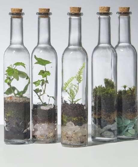 77. Monte seus terrários em garrafas de vidro. Fonte: Pinterest