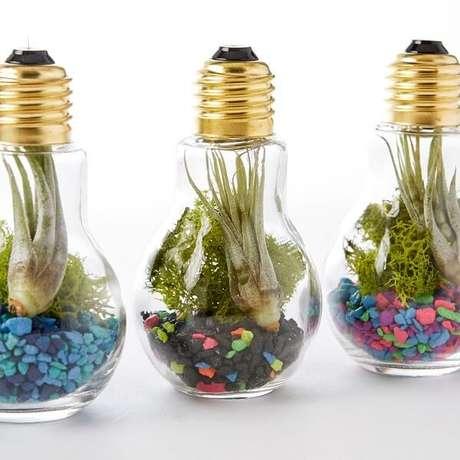 61. Reaproveite as lâmpadas para formar lindos terrários. Fonte: Pinterest
