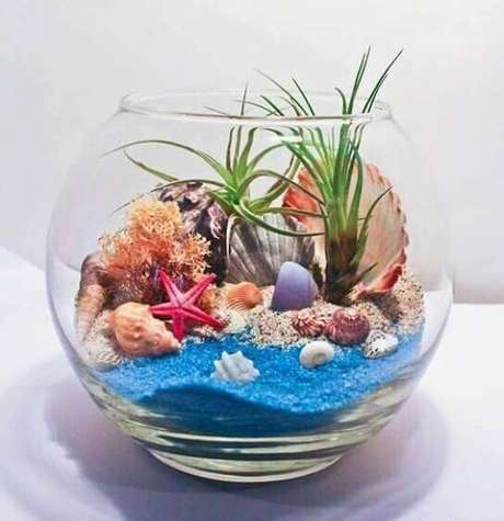 9. Use areia colorida e conchas para um terrário mais praiano. Fonte: Pinterest