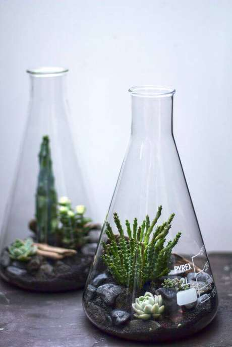 15. Usar frascos diferentes é uma forma de dar personalidade ao terrário.