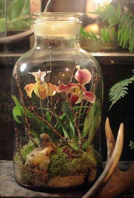 29. O terrário também pode ser lar de flores, como a orquídea.