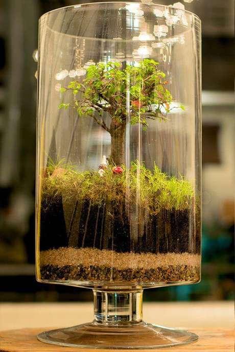 30. Os vasos altos ficam lindos como terrários de bonsai.