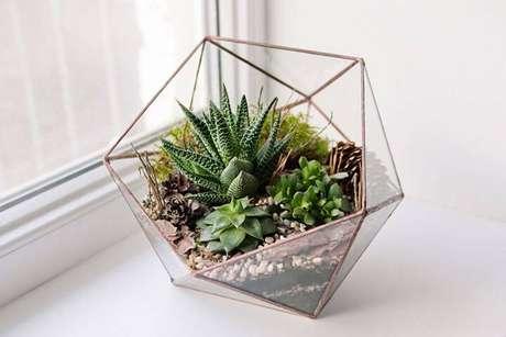 32. Estruturas de metal e vidro ficam lindas como terrário.
