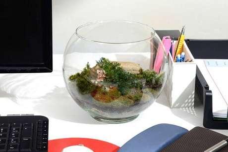 45. Ter um terrário no home office é ideal para deixar o ambiente mais descontraído.