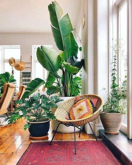 8. Use os vasos decorativos grandes na sala de estar iluminada – Via: Pinterest
