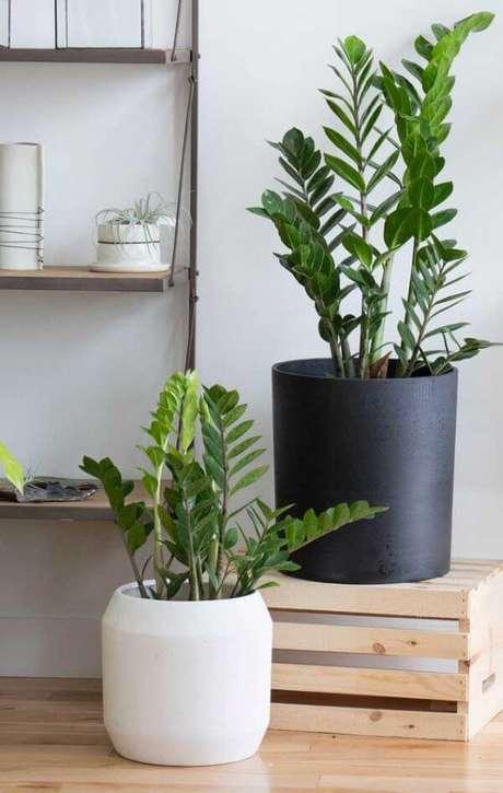 6. Decoração moderna com vaso grande preto e branco – Via: Pinterest