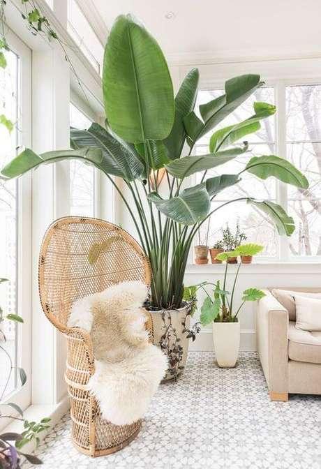 20. Sala iluminada com vaso grande de plantas – Via: Pinterest