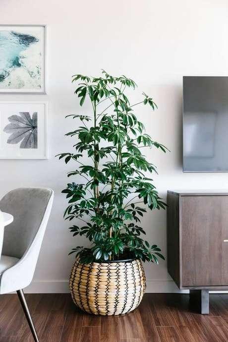 24. Vaso grande decorativo ao lado da rack – Via: Pinterest
