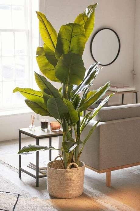 25. Sala moderna com vaso grande para planta – Via: Pinterest
