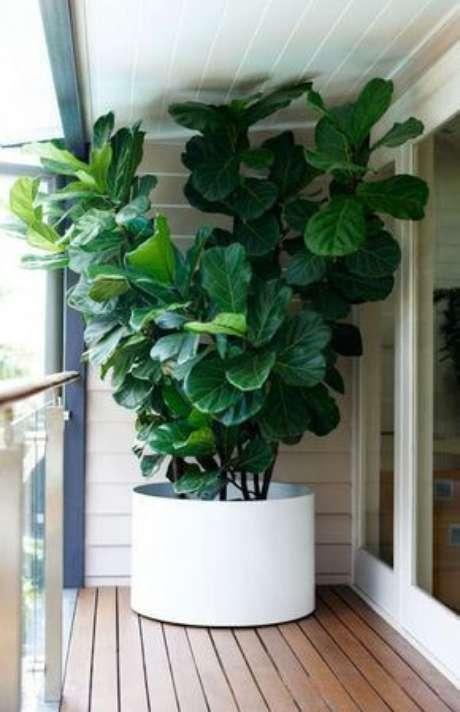 27. Varanda com vaso grande e planta alta na sacada – Via: Pinterest