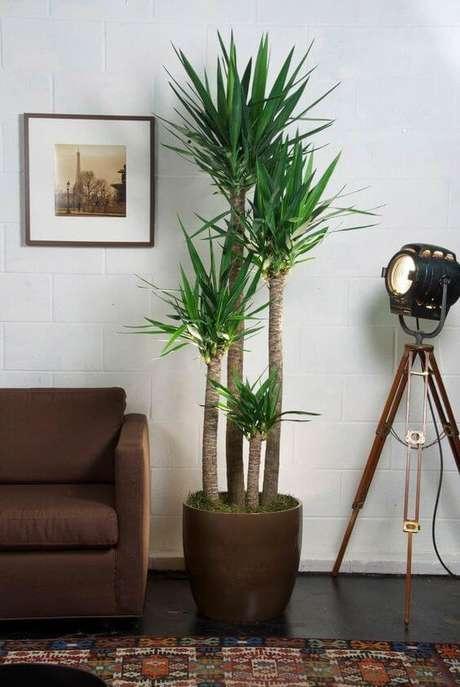 30. Vaso grande ao lado do sofá – Via: Pinterest
