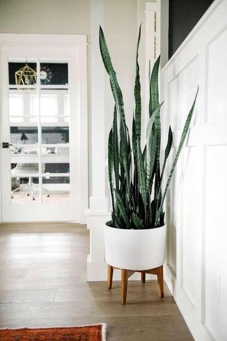 34. Vaso grande branco com planta espada de são jorge – Via: Pinterest