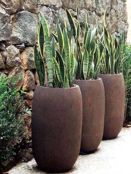 37. Vaso grande com a planta espada de São Jorge – Via: Pinterest