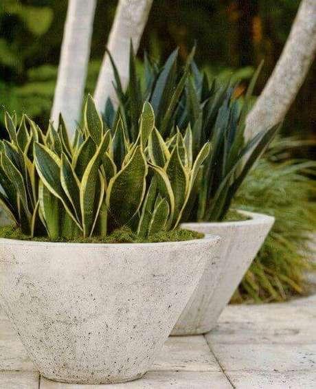 46. Vaso grande de cimento para casa moderna – Via: Pinterest