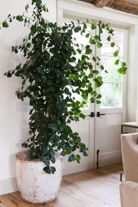 65. Use o vaso grande para decorar a casa moderna – Via: Pinterest