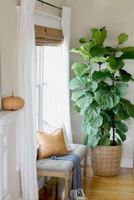 75. Vaso grande para plantas – via: City Farm House