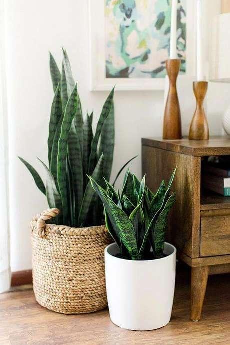 78. Vaso grande para sala rústica – Via: Dream Green Diy