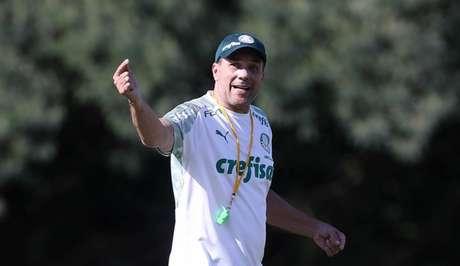 Treinador está em sua quinta passagem pelo Palmeiras (Foto: Agência Palmeiras/Divulgação)