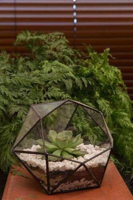 27. O terrário é um dos modelos de jardim bem delicados