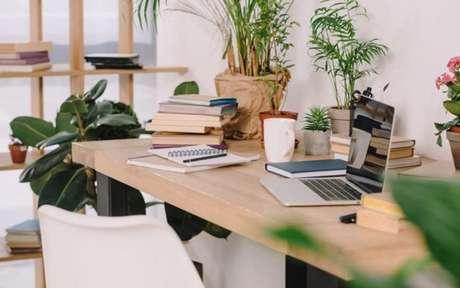 Mesa de escritório com alguns objetos e plantas