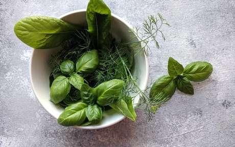Algumas espécies de ervas contém propriedades calmantes - Crédito: Asya Vlasova/Pexels
