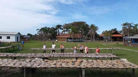 Moradores da Ilha do Cardoso, no litoral sul de São Paulo, produzem o peixe seco para doação a comunidades pobres