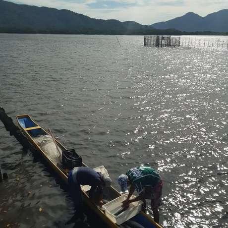 Pescadores da Ilha do Cardoso voltaram a trabalhar depois de projeto de doação