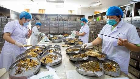 O governo chinês viu a pandemia da covid-19 como uma oportunidade para tentar internacionalizar a medicina tradicional do país