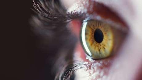Chave para esse fenômeno estaria na retina