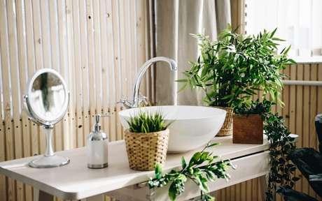 Banheiro com algumas plantas dispostas na pia