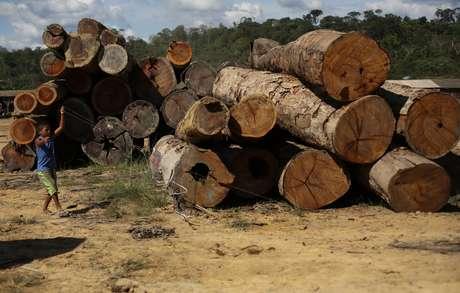 Garoto empina pipa ao lado de madeira extraída da Amazônia no Pará 27/06/2013 REUTERS/Nacho Doce