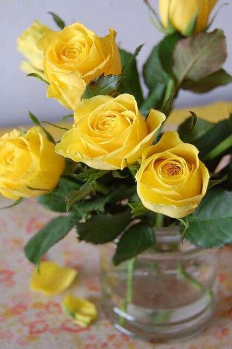 56. Vaso de rosa amarela – Via: Pinterest