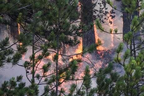 Polícia iniciou investigação para determinar causa do fogo