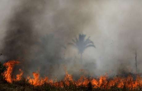 Vista de queimada na flotesta amazônica perto de Porto Velho
