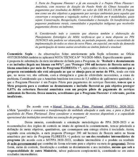 """Análise feita pela equipe técnica da pasta comandada por Paulo Guedes afirma que programa Floresta+, proposto por Salles como alternativa à meta inicial do PPA, é """"relevante"""", porém """"insuficiente"""""""
