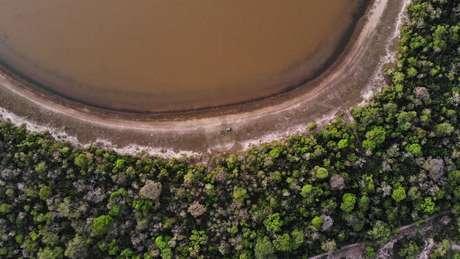 Nos últimos anos, Pantanal vem enfrentando dificuldades como a expansão do agronegócio e a redução gradual das inundações do bioma