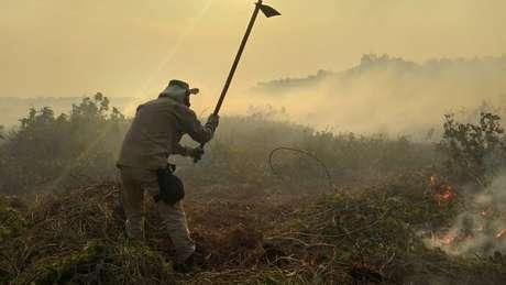 Diversas equipes de bombeiros e brigadistas tentam conter queimadas no Pantanal