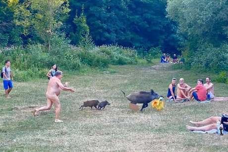 O nudista estava tomando sol em um lago em Berlim quando foi surpreendido com um javali roubando seu notebook